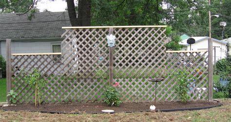 trellises garden late june garden weeds