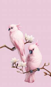 Animals Wallpapers iPhone : Animals wallpaper iPhone ...
