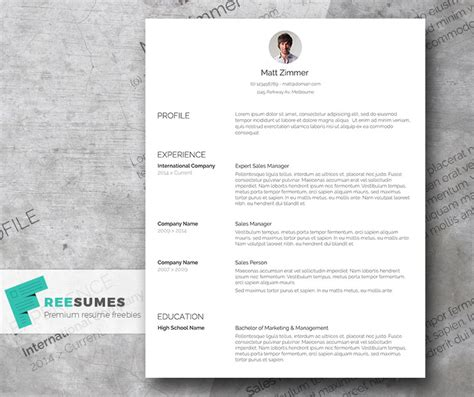 Cleaning Curriculum Vitae by Spick And Span A Clean Resume Template Freebie