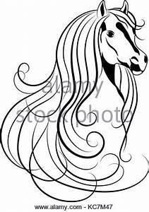 Pferdekopf Schwarz Weiß : dressur pferd skizze stil vektor abbildung bild ~ Watch28wear.com Haus und Dekorationen