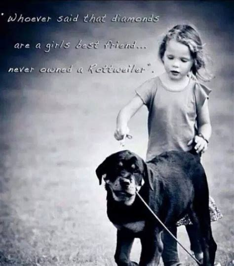pet quotes images  pinterest words animal
