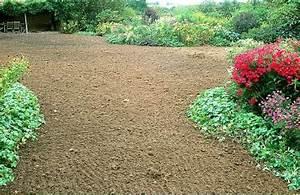 Semer Gazon Periode : semer gazon quel gazon pour votre jardin ~ Melissatoandfro.com Idées de Décoration