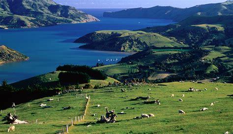 Harbour Asset Management: New Zealand's economy is