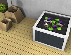 Miniteich Pflanzen Set : miniteich balkon miniteich anlegen kleine oase auf dem balkon kreieren design 5001355 ~ Buech-reservation.com Haus und Dekorationen