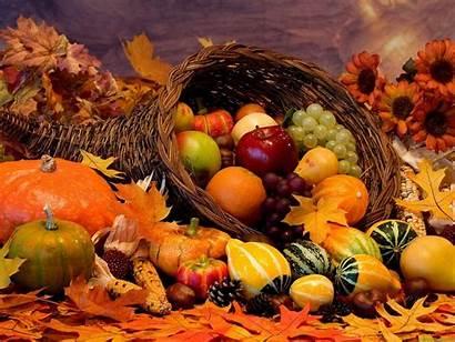 Thanksgiving Happy Desktop Backgrounds Wallpapers Bing Harvest