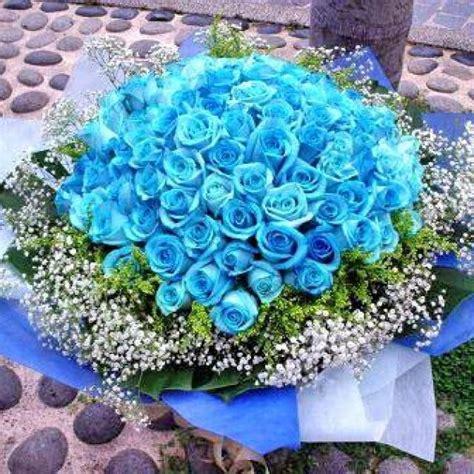 blue rose  blue roses florists  singapore