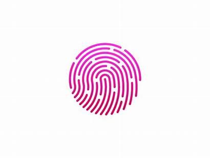 Touch Create Dribbble Fingerprint Icon Iphone Touchid