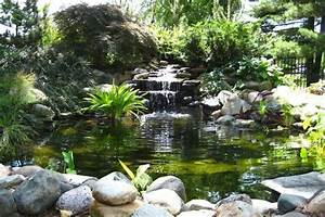 emejing bassin de jardin cascade ideas design trends With comment amenager un petit jardin 7 comment installer un ruisseau ou une cascade au bassin