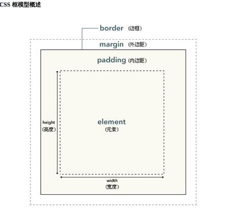css margin spadding html table cellpadding