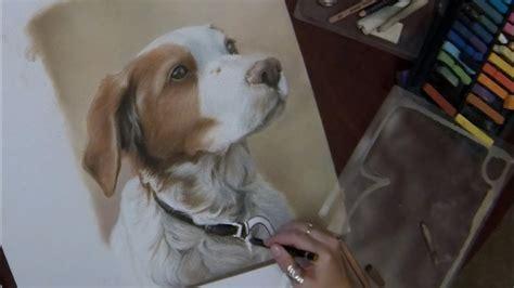 pastel dog portrait timelapse speed painting youtube