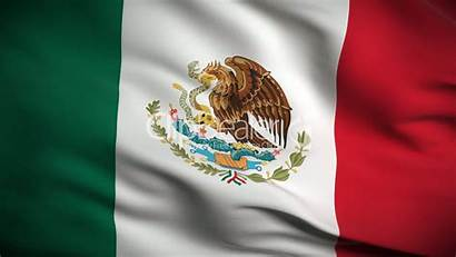 Flag Mexican Looped Royalty Clip Footage