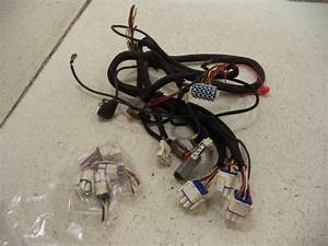 02 Big Dog Bulldog Main Wire Wiring Harness