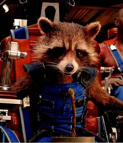 Raccoon Rocket Guardians Galaxy Gifs Groot Elm
