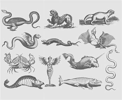Ancient Creatures Illustrations Vector Illustration Freevector