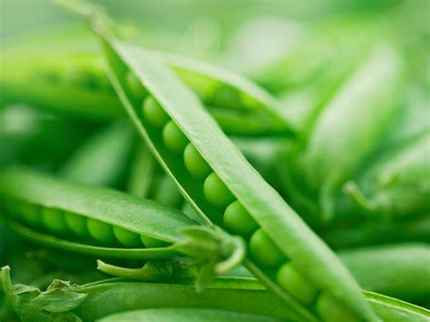 molybdenum supplements remedies andrew weil md