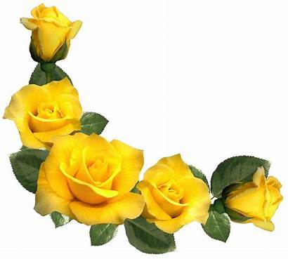 Roses Yellow Clip Rose Clipart Flowers Flower