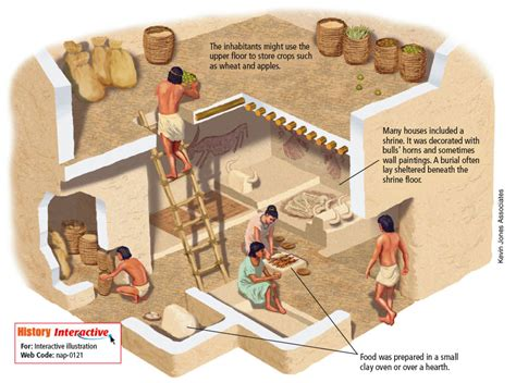 early cuisine neolithic period start of a proper human civilization