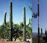 Hidden Cell Phone Towers