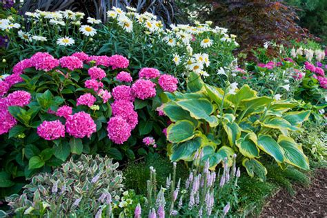 flowers country basket garden centre niagara falls