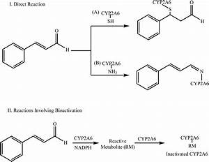 Inactivation Of Cyp2a6 By The Dietary Phenylpropanoid