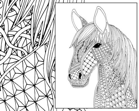 horse coloring page animal coloring page adult coloring