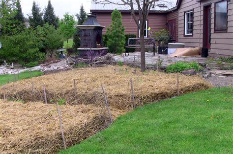 mulch garden sheet mulching follow this advice for the best sheet mulch