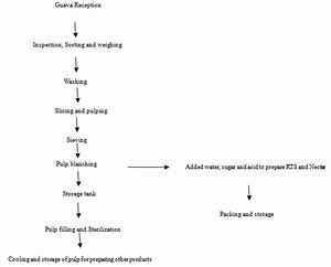 Jam Processing Flow Chart Inspirational Extraction And