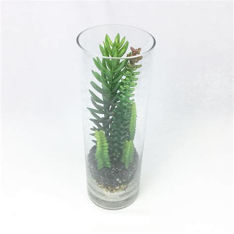 สวนขวดแก้ว สวนโหลแก้ว พืชฉ่ำน้ำเทียม Succulent plant ...
