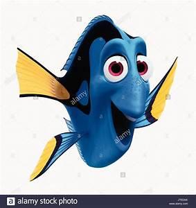Findet Nemo Dori : finding nemo and finding dory stockfotos finding nemo and finding dory bilder alamy ~ Orissabook.com Haus und Dekorationen