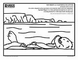 Otter Coloring Sea Southern Outreach Sheets Pdf sketch template