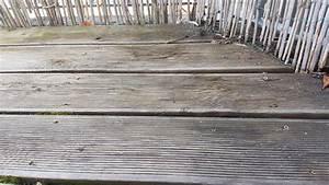Balkon Dielen Holz : balkon dielen aus holz reinigen und len so klappts ~ Michelbontemps.com Haus und Dekorationen
