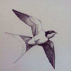 Two Swallow Drawing