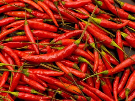 Chile Peppers and Their Heat Levels: Scoville Heat Scale ...