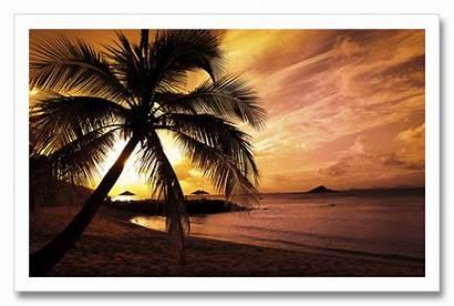 Sun Words Side Sky Summer Low Fightin