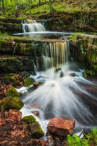 Photography Forest Waterfall