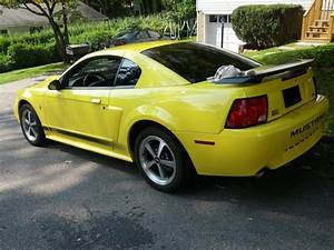 Expired - 2003 Mach 1 - Zinc Yellow. Low Miles. Almost Bone Stock | Mustang Forums at StangNet
