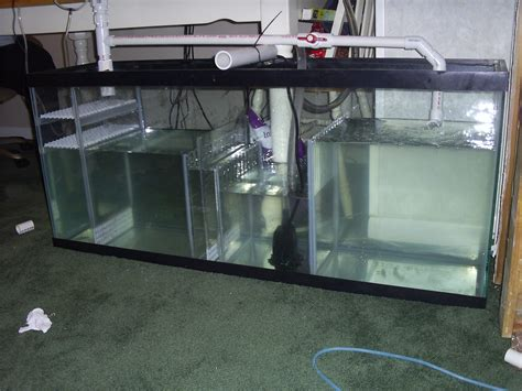 Help Setting Up A 120 Gallon Salt Water Tank