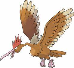 Fearow Pokédex: stats, moves, evolution & locations ...