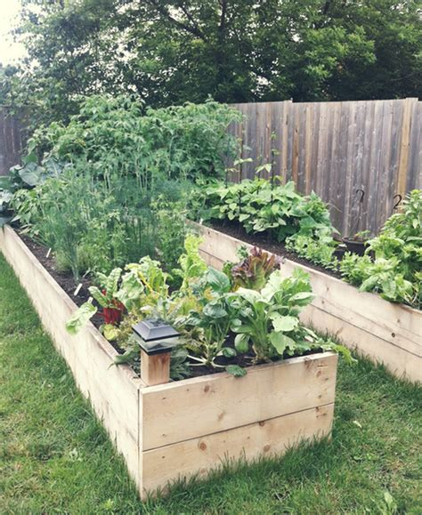 Raised Garden Bed by Diy Easy Access Raised Garden Bed The Owner Builder Network