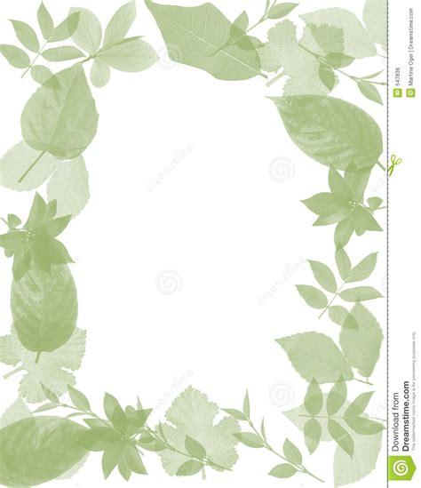 framing leaves frame leaves royalty free stock image image 547836