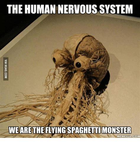 Monster Meme - the human nervous system we are the flyingspaghetti monster meme ful com nervous system meme