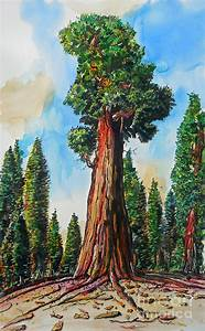 Huge Redwood Tree Painting by Terry Banderas