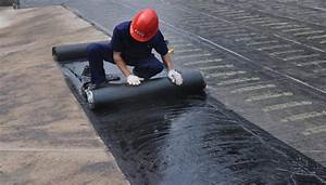 Liquid Waterproofing Membrane Market Share In Malaysia