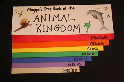 homeschool science zoology  pinterest animal