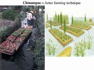 Pics For > Aztec Chinampas