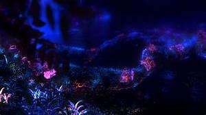 Re-Imagining Disney World: Animal Kingdom Part 4: Pandora