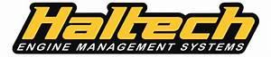Shop Haltech Engine Management System