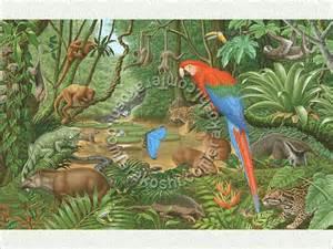 South America Rainforest Animals