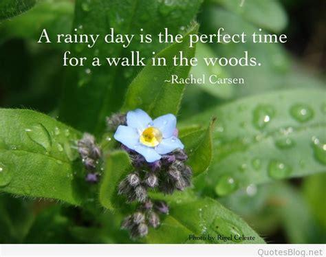 amazing rain quotes  pics