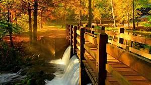 Wood, Bridge, Over, The, Stream, At, Fall, Wallpaper